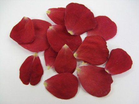 wedding rose petal confetti real ferrari ducati formula 1 moto gp