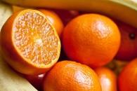 fruit-665607_960_720